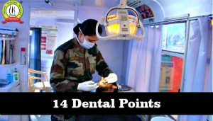 Know About 14 Dental Points
