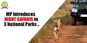 MP Introduces Night Safaris in 3 National Parks